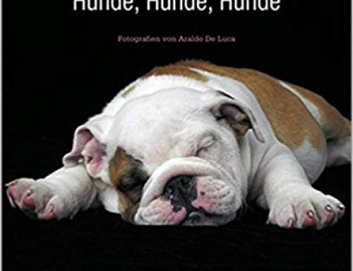 Hunde, Hunde, Hunde