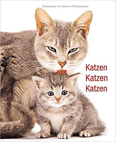 Katzen Katzen Katzen Buch